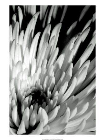 https://imgc.artprintimages.com/img/print/dramatic-mum-i_u-l-pfsdn70.jpg?p=0