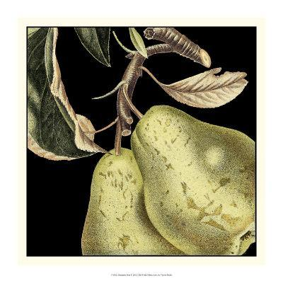 Dramatic Pear-Vision Studio-Art Print