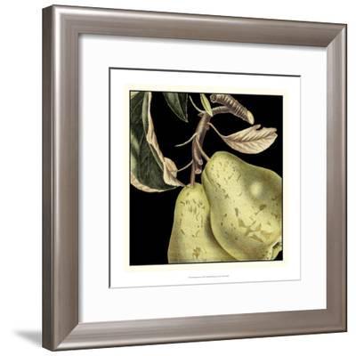Dramatic Pear-Vision Studio-Framed Art Print