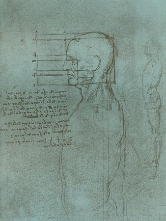 https://imgc.artprintimages.com/img/print/drawing-illustrating-the-theory-of-the-proportions-of-the-human-figure-c1472-c1519-1883_u-l-q1edjye0.jpg?p=0