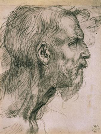 https://imgc.artprintimages.com/img/print/drawing-with-male-profile-in-the-uffizi-gallery-in-the-gabinetto-dei-disegni-e-delle-stampea_u-l-p12gog0.jpg?p=0