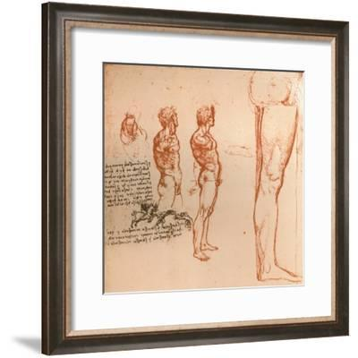 Drawings showing the movements of the human figure and warriors fighting, c1472-c1519 (1883)-Leonardo da Vinci-Framed Giclee Print
