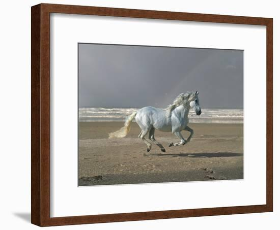 Dream Horses 003-Bob Langrish-Framed Photographic Print