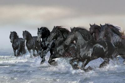 https://imgc.artprintimages.com/img/print/dream-horses-019_u-l-q12tnmr0.jpg?p=0