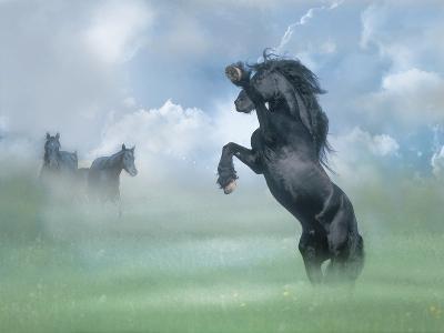 Dream Horses 025-Bob Langrish-Photographic Print