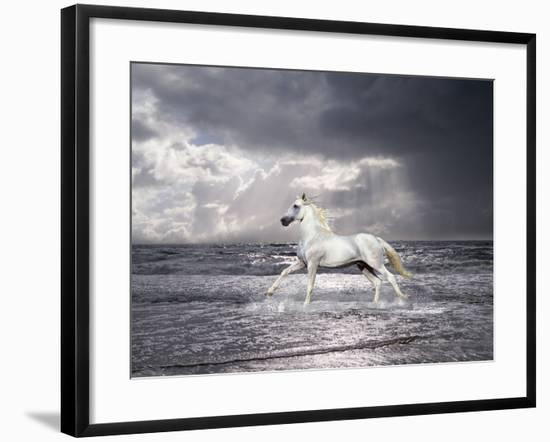 Dream Horses 050-Bob Langrish-Framed Photographic Print