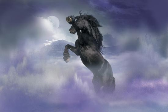 Dream Horses 056-Bob Langrish-Photographic Print