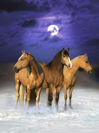 https://imgc.artprintimages.com/img/print/dream-horses-077_u-l-q12tiwg0.jpg?p=0