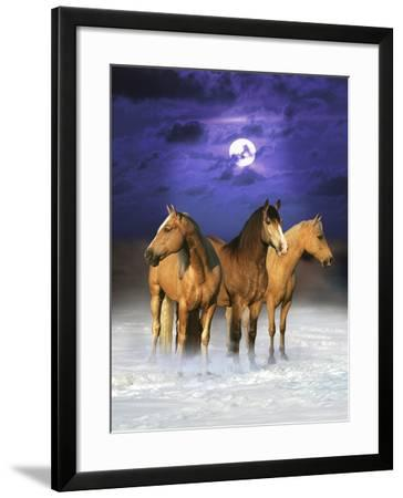 Dream Horses 077-Bob Langrish-Framed Photographic Print