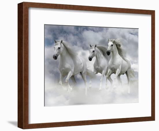 Dream Horses 087-Bob Langrish-Framed Photographic Print
