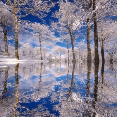 Dream in Blue-Philippe Sainte-Laudy-Premium Photographic Print