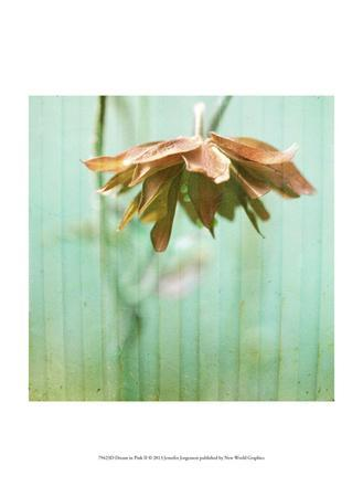 https://imgc.artprintimages.com/img/print/dream-in-pink-ii_u-l-f6fhwp0.jpg?p=0