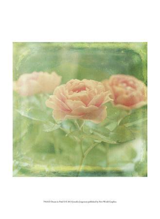 https://imgc.artprintimages.com/img/print/dream-in-pink-x_u-l-f6fhwx0.jpg?p=0