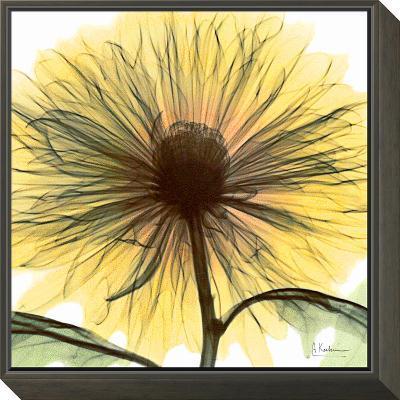 Dream in Yellow-Albert Koetsier-Framed Print Mount