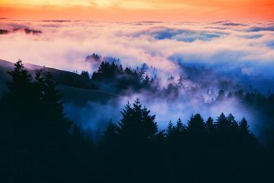 Dream Landscape of Fog at Sunset, San Francisco, California-Vincent James-Photographic Print