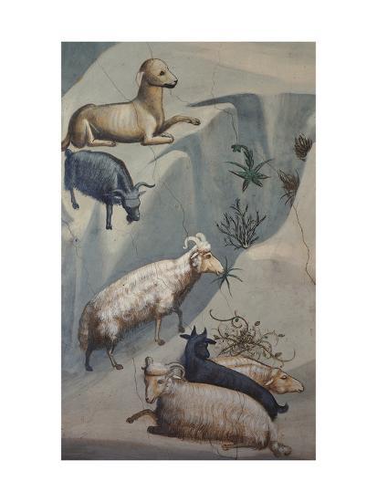 Dream of Joachim, Sheep-Giotto di Bondone-Art Print