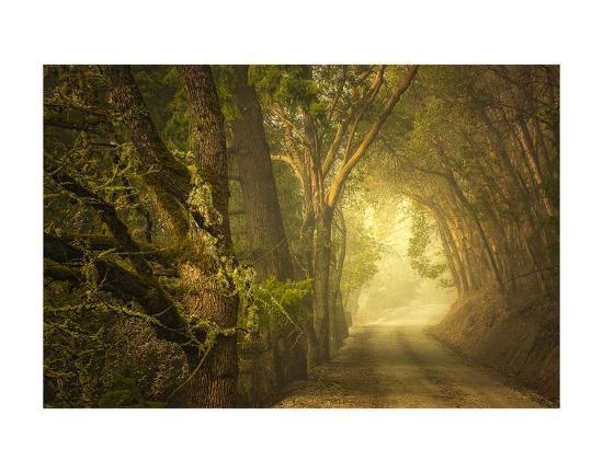 Dream's Journey-David Lorenz Winston-Art Print