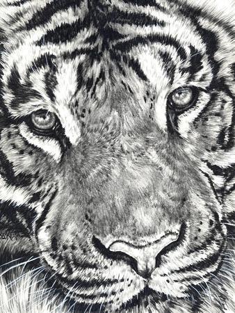 https://imgc.artprintimages.com/img/print/dreamer_u-l-pykrp70.jpg?p=0