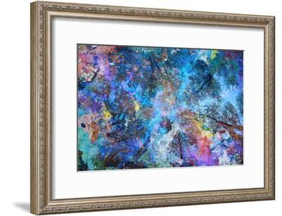 Dreaming up to the Trees-Michael Broom-Framed Art Print