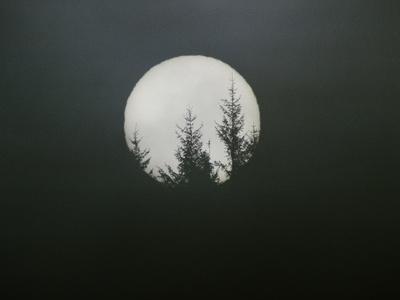 https://imgc.artprintimages.com/img/print/dreamscape_u-l-pheycl0.jpg?p=0