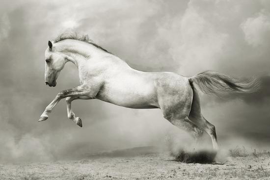 dreamstate-equus