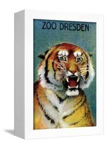 Dresden Zoo Poster With A Tiger by Dresden Zoo
