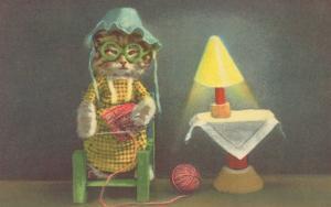 Dressed Kitten Knitting