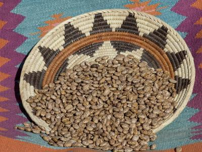 Dried Beans in a Native American Basket--Photographic Print