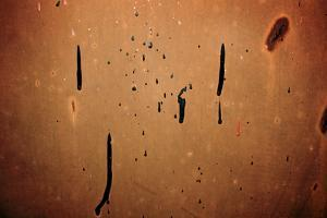 Dried Paint on a Rusted Door