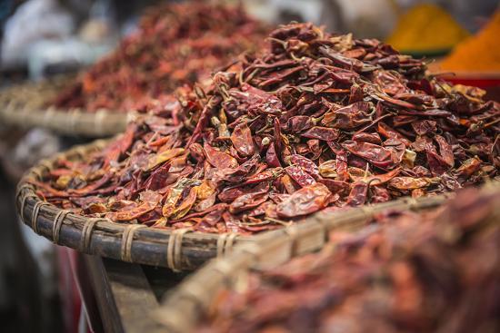 Dried Red Chillies for Sale at Pyin Oo Lwin (Pyin U Lwin) Market, Myanmar (Burma), Asia-Matthew Williams-Ellis-Photographic Print
