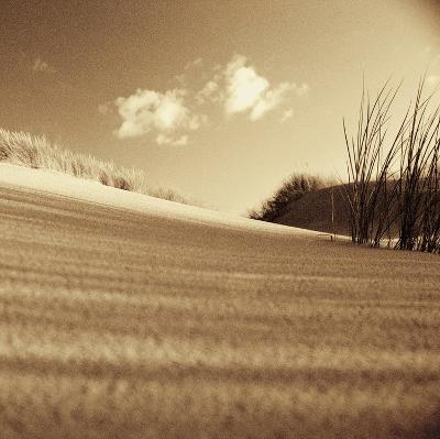 Drifting Sands III-Jo Crowther-Giclee Print
