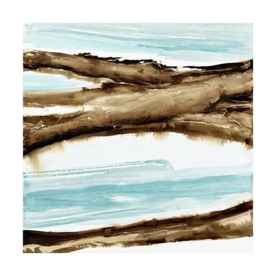 https://imgc.artprintimages.com/img/print/driftwood-1_u-l-q12yaf90.jpg?p=0