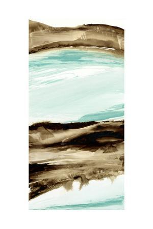 https://imgc.artprintimages.com/img/print/driftwood-5_u-l-q1ainal0.jpg?p=0