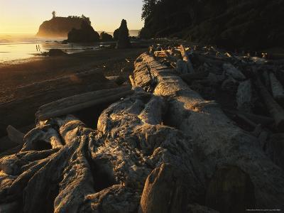 Driftwood Littered Beach with Sea Stacks at Twilight-Melissa Farlow-Photographic Print