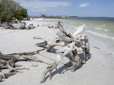 Driftwood on Beach with Fishing Pier in Background, Sanibel Island, Gulf Coast, Florida-Robert Harding-Photographic Print