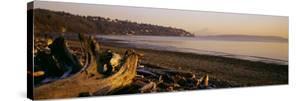 Driftwood on the Beach, Discovery Park, Mt Rainier, Seattle, King County, Washington State, USA