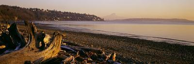 Driftwood on the Beach, Discovery Park, Mt Rainier, Seattle, King County, Washington State, USA--Photographic Print