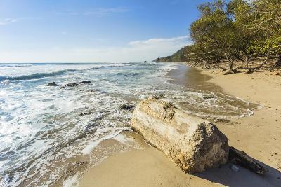Driftwood on This Beautiful Surf Beach Near Mal Pais, Playa Santa Teresa, Costa Rica-Rob Francis-Photographic Print