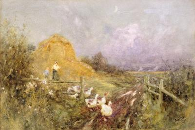 Driving Geese, Early Evening, 1907-Thomas James Lloyd-Giclee Print