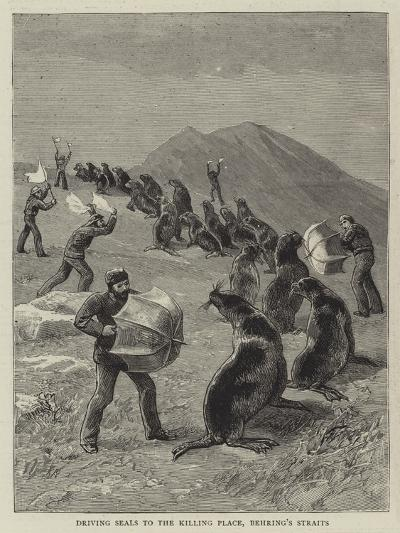 Driving Seals to the Killing Place, Behring's Straits--Giclee Print