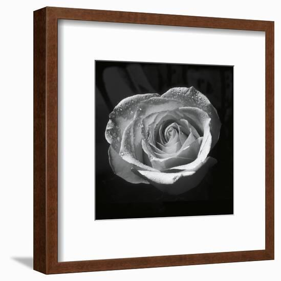 Droplets II-Tom Artin-Framed Art Print