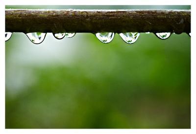 https://imgc.artprintimages.com/img/print/drops-of-water-ii_u-l-f934r40.jpg?p=0