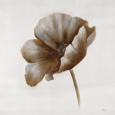 Sepia Poppy I