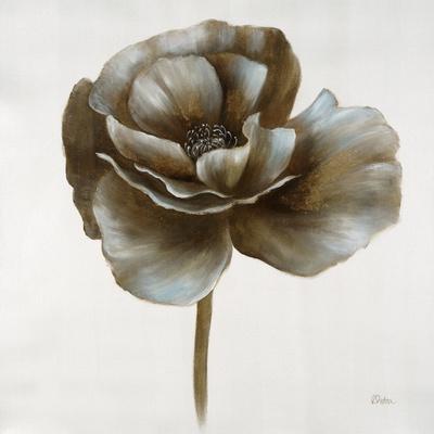 Sepia Poppy II