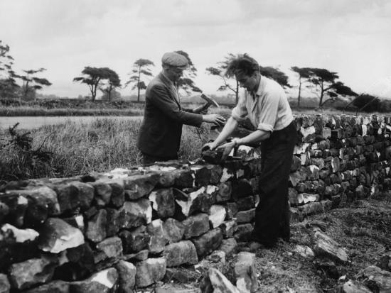Dry Stone Walling--Photographic Print
