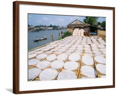 Drying Rice Noodles in the Sun Beside the Mekong River in Sa Dec-Paul Harris-Framed Photographic Print