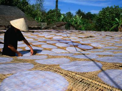 Drying Rice Paper Before Cutting into Noodles, Vietnam-Patrick Syder-Photographic Print