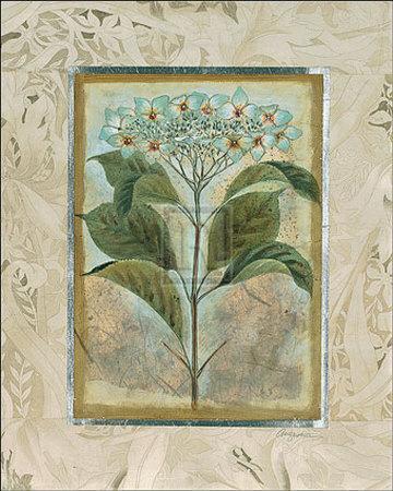 https://imgc.artprintimages.com/img/print/du-jardin-ii_u-l-ei2y10.jpg?p=0