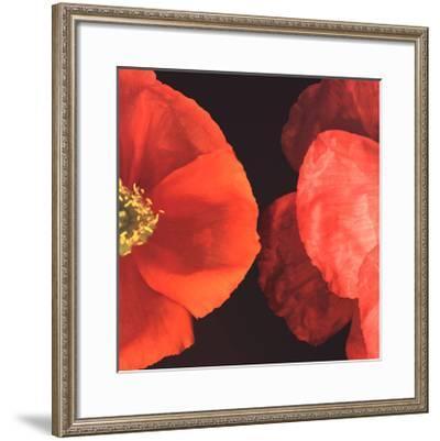 Dual Poppy Right-Pip Bloomfield-Framed Art Print