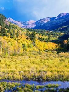 Aspen Colorado Landscape by duallogic